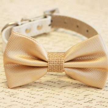 Champagne and burlap Dog Bow Tie, Burlap Wedding