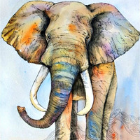 Painted Elephant Boho Wall Bed Tapestry