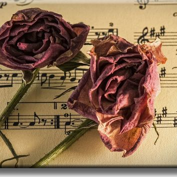 Music and Roses, Music Notes Picture on Acrylic , Wall Art Décor, Ready to Hang