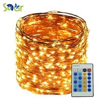 5M 10M 20M 30M 50M Remote Warm White Led copper string DC 12V LED wire Light Lamp For Christmas Wedding Party Home decoration