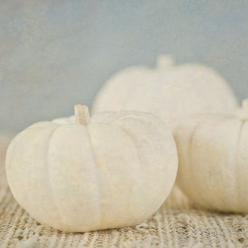 Pumpkin Photography, Fall Home Decor, Rustic Still Life, White and Gray Wall Art, Thanksgiving Picture, Kitchen Artwork
