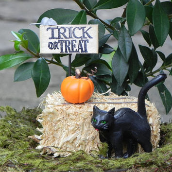Fairy Garden Trick or Treat halloween miniature black cat pumpkin hay bale