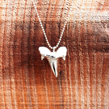 Karlie Shark Tooth Pendant Necklace - Silver