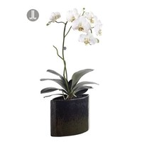 """Walmart: 27"""" Potted Artificial White Silk Phalaenopsis Orchid Plant"""