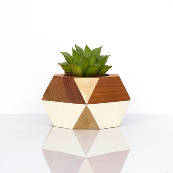 Geometric Wooden Pot — Gold + White