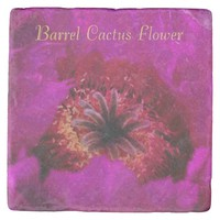 Cactus Flower Nature Art Photo in Pink with Text Stone Coaster