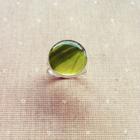 Real Leaf Green Ring Resin Jewelry Botanical Jewelry Nature Inspired Jewelry Wedding Bridesmaid Jewelry