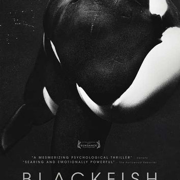 Blackfish 11x17 Movie Poster (2013)