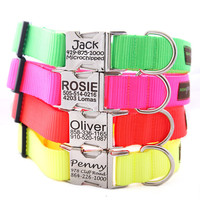 Personalized Neon Dog Collar -- 4 Fluorescent Colors with info Engraved on the Buckle