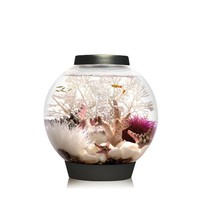 biOrb CLASSIC 15 Aquarium with LED Light - 4 Gallon, Black