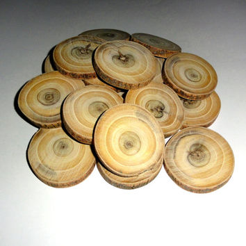 WOOD Wood Slabs. Tree Slices 20 pieces. Wood Slices 20 Cut Pieces Round Log Bark Natural. Wood discs for pendants, key chains, weddings wood