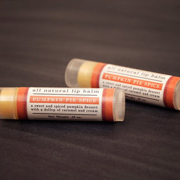 Pumpkin Pie Spice Lip Balm  All Natural  by LiveBeautifullyBody