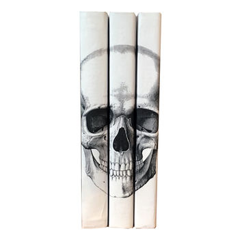 Black Skull Decorative Books