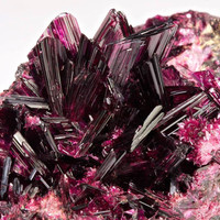 Spectacular Erythrite From Morocco