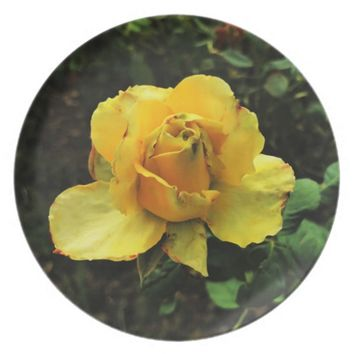 Yellow Rose Dinner Plate