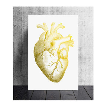 20x30 inch gold foiled anatomical heart, ideal office print, white background, wall art, human heart, quirky poster, gold and white art