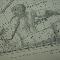Old star chart Dutch vintage astronomy map of Centaurus Argo navis Crater Raven Cat sign hemisphere constellation stars zodiac centaur 10x15