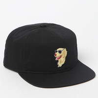 Coal The Best Friend Dog Baseball Cap at PacSun.com