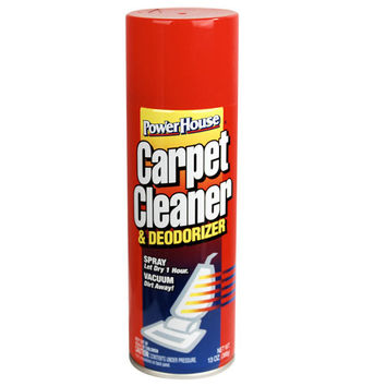 Carpet Cleaner Diversion Safe