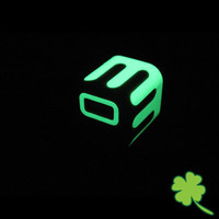 Glow in the Dark Stickers for iPhone Charger USB Cable Car Adapter US model