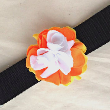 Halloween Dog collar Flower Bow in Orange Yellow White Candy corn colors. A jersey rose flower with handy velcro closure