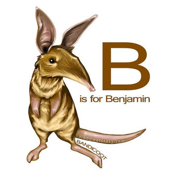 Personalized Name: B is for Bandicoot Art, Nursery Animal, Alphabet Print, Letter Poster, Bedroom Decor, Wall Art, Brown and White