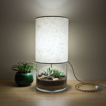 Large Round Terrarium/Display Table Lamp, with Handmade Paper Lampshade