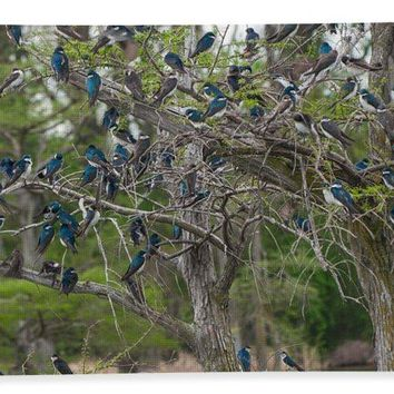 Birds At Reelfoot - Bath Towel