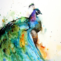 PEACOCK Watercolor Print by Dean Crouser