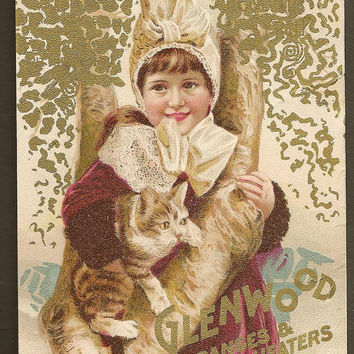 Victorian Trade Card Glenwood Ranges & Heaters Little Girl With Rescued Kitten Antique Advertising Sold by Doran Furnace Co Skowhegan Maine