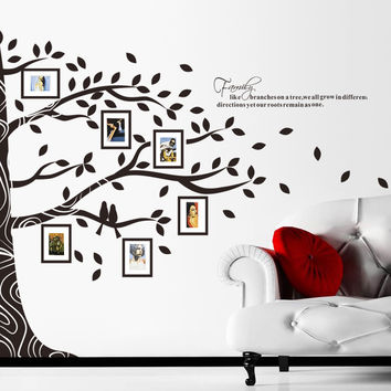 Tree wall decal photo frame wall decal