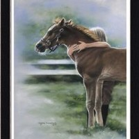 Emily And The Foal by Lesley Harrison Girl With Her Horse Art Print Framed Wall Decor Picture