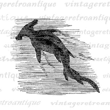 Digital Image Hammerhead Shark Download Graphic Printable Vintage Clip Art Jpg Png Eps  HQ 300dpi No.596
