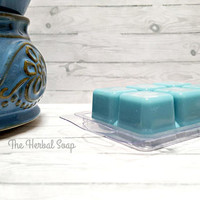 Ocean Paradise Scented Wax Melts / Soy Wax Melts / Soy Wax Tarts