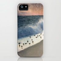 Piping Plovers and Peach and Blue Sunset  iPhone & iPod Case by Brooke Ryan Photography