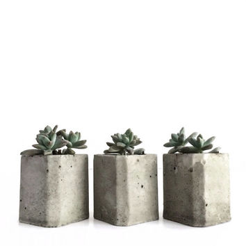 Set of 3 Mini Square Concrete Planters, Modern Concrete Planter, Wedding Favors, Angular Planter, Succulents, Geometric, Modern, frae and co