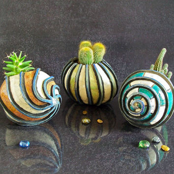 ceramic planter for succulents - raku sea shell for cactus like hermit crab