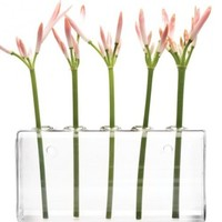 Hudson 4, 5-Hole Wall Vase, Hudson 4 Collection Vases & Chive Vases | YLiving
