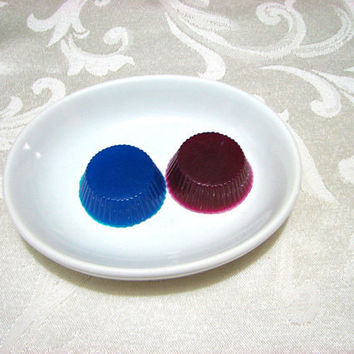 Aloe Soap Pair of Soap Disks One Blue One by casacampbell on Etsy