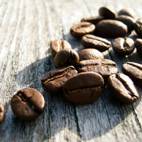 Fresh Roasted Coffee - 1lb Brazil Cerrado Fazenda Aurea - Whole Bean Coffee
