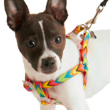 Right Bark Atcha Harness | Mod Retro Vintage Pet Accessories | ModCloth.com