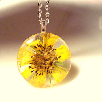Texas Jewelry Daisy Real Pressed Wildflower Glass Necklace