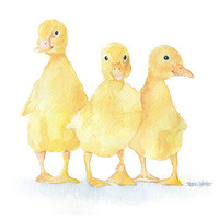 Three Ducklings Watercolor Painting Fine Art Print Giclee Print 8 x 10