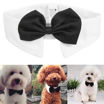 Gentleman Dog Bow Ties Pet Bow ties Adjustable Dog Cat Neckties Bow Butterfly Tie Necktie Collar