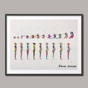 Original watercolor Pregnancy stages canvas painting Anatomy Wall art Medical poster print Pictures living room Home Decoration