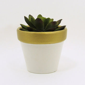 Terracotta Pot, Succulent Planter, Cute Planter, Small Pot, White Planter, Air Plant Holder, Indoor Planter, Succulent Pot, Gold Planter