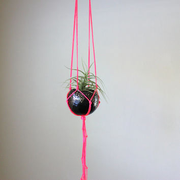 Macrame Air Plant Hanging Planter - Neon Pink Macrame Air Plant Hanger with Tillandsia - Black, Gold & Neon PInk.