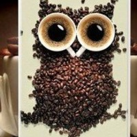 Buy World High Quality Owls White Black Coffee Cup Aluminum Hard Case for iPhone 4/4S