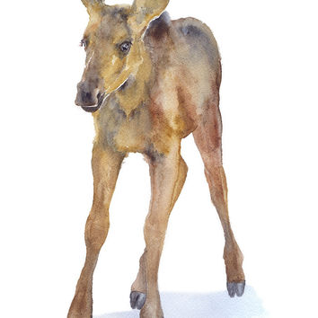Moose Watercolor
