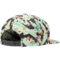 DC Cambake Tropical Skateboard Snapback Hat